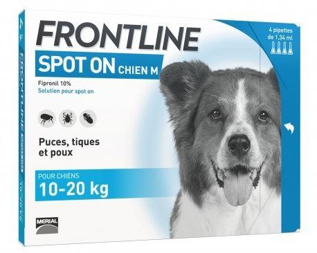 frontline spot on chien pharmacie officine